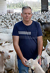 Foto: VidiPhoto<br /> <br /> SLIJK-EWIJK – Geitenhouder WouterBunt uit Slijk-Ewijk (Gld) tussen zijn melkgeiten. Wouter Bunt bezit zo'n 1300 geiten en behoort daarmee tot een van de grootste geitenhouders van ons land.