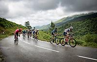 Bauke Mollema (NED/Trek-Segafredo) setting tempo up the Col de Port<br /> <br /> Stage 16 from El Pas de la Casa to Saint-Gaudens (169km)<br /> 108th Tour de France 2021 (2.UWT)<br /> <br /> ©kramon