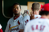 Daryl Jones (4) of the Springfield Cardinals is congratulated by teammates in the dugout after hitting a home run during a game against the Tulsa Drillers at Hammons Field on July 18, 2011 in Springfield, Missouri. Tulsa defeated Springfield 13-8. (David Welker / Four Seam Images)