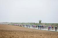 peloton riding the cobbles.<br /> <br /> <br /> 117th Paris-Roubaix (1.UWT)<br /> 1 Day Race: Compiègne-Roubaix (257km)<br /> <br /> ©kramon