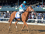 LEXINGTON, KY - APRIL 7: #1, Monomoy Girl, ridden by Florent Geroux wins the G1 Central Bank Ashland at Keeneland Race Course on April 7, 2018 in Lexington, KY. (Photo by Jessica Morgan/Eclipse Sportswire/Getty Images)