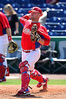Philadelphia Phillies catcher Steven Lerud #61 during warmups before a scrimmage against the Florida State Seminoles at Brighthouse Field on February 29, 2012 in Clearwater, Florida.  Philadelphia defeated Florida State 6-1.  (Mike Janes/Four Seam Images)