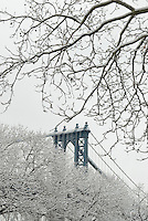 The Manhattan Bridge Viewed Thru Snow Covered Trees in Lower Manhattan, New York City , New York State, USA