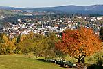 DEU, Deutschland, Bayern, Niederbayern, Naturpark Bayerischer Wald, Freyung | DEU, Germany, Bavaria, Lower-Bavaria, Nature Park Bavarian Forest, Freyung