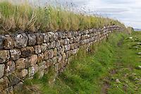 Northumberland,  England, UK.  Hadrian's Wall Stonework.