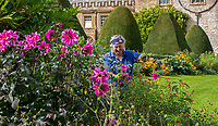 BNPS.co.uk (01202) 558833. <br /> Pic: CorinMesser/BNPS<br /> <br /> Pictured: Forde Abbey gardener Johanna Witts at work in the Park Garden. <br /> <br /> The team of three, all female, gardeners at Forde Abbey in Chard, Somerset have been kept busy tending to the award winning 900 year old gardens during the recent sunny spell.