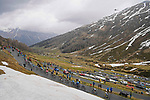 The peloton climb during Stage 20 of the 2021 Giro d'Italia, running 164km from Verbania to Valle Spluga-Alpe Motta, Italy. 29th May 2021.  <br /> Picture: LaPresse/Fabio Ferrari   Cyclefile<br /> <br /> All photos usage must carry mandatory copyright credit (© Cyclefile   LaPresse/Fabio Ferrari)