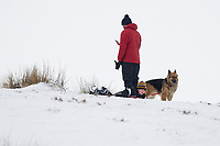 Pictured: A young boy sledges in the snow at Libanus, in Brecon, Wales, UK. Friday 01 February 2019<br /> Re: Heavy snow and freezing temperatures affecting parts of the UK.