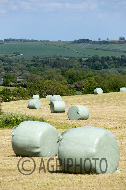 7-6-2021 Round bales of silage in Rutland<br /> Tim Scrivener Photographer 07850 303986<br />      ....Covering Agriculture In The UK....
