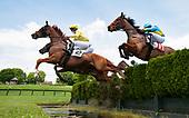 2nd Virginia Equine Alliance Maiden Hurdle II - Lonely Weekend