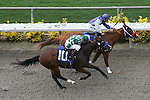 July 28 2010: Mister Jazz and Martin Pedroza win the 5th race at Del Mar Race Track in Del Mar CA.