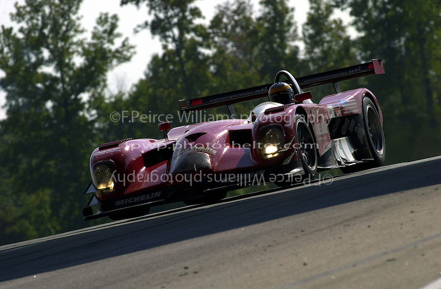 Petit Le Mans, Road Atlanta, Brazelton,GA,USA .30 September,2000  copyright©F.Peirce Williams 2000.David Brabham crests the hill in the #1 Panoz LMP Roadster..