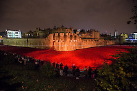 08-09.11.2014 - Remembrance Day 2014