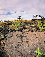 Kings trail, Waikoloa Petroglyphs trail, South Kohala, The Big Island of Hawaii