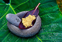 Ground Awa  (kava) powder on red ti leaf in Hawaiian stone bowl