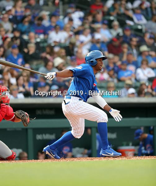 Roberto Caro - Chicago Cubs 2019 spring training (Bill Mitchell)