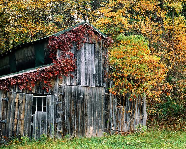 Barn and fall color in Brown County, IN