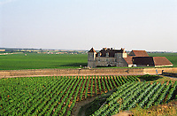 The Clos de Vougeot 16th century monastery and vineyard and the les Petits Vougeots vineyard, Burgundy, Bourgogne, France