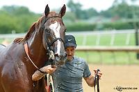 El Pichon after a race at Delaware Park on 7/13/13