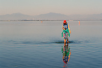 Woman walking in Water of Pacific Ocean, Boundary Bay Regional Park, Delta, BC, British Columbia, Canada (Model Released)