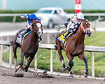 HALLANDALE BEACH, FL - FEB 03:Audible #4 with Javier Castellano in the irons for trainer Todd A. Pletcher leads the field along the final turn on the way to winning the $350,000 Holy Bull Stakes (G2) at Gulfstream Park on February 3, 2018 in Hallandale Beach, Florida. (Photo by Bob Aaron/Eclipse Sportswire/Getty Images)