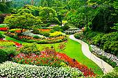 Tom Mackie, FLOWERS, photos, The Sunken Garden, Butchart Gardens, Victoria, Vancouver Island, British Columbia, Canada, GBTM070312-1,#F# Garten, jardín
