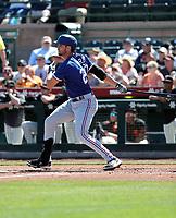 Greg Bird - Texas Rangers 2020 spring training (Bill Mitchell)