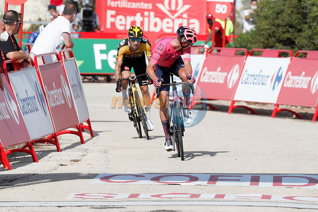Magnus Cort Nielsen (DEN) EF Education-Nippo from the breakaway out front just ahead of Primoz Roglic (SLO) Jumbo-Visma on the final climb during Stage 6 of La Vuelta d'Espana 2021, running 158.3km from Requena to Alto de la Montaña Cullera, Spain. 19th August 2021.    <br /> Picture: Luis Angel Gomez/Photogomezsport | Cyclefile<br /> <br /> All photos usage must carry mandatory copyright credit (© Cyclefile | Luis Angel Gomez/Photogomezsport)