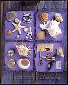 Interlitho, STILL LIFES, photos+++++,mussles,KL16381,#I# Stilleben, naturaleza muerta
