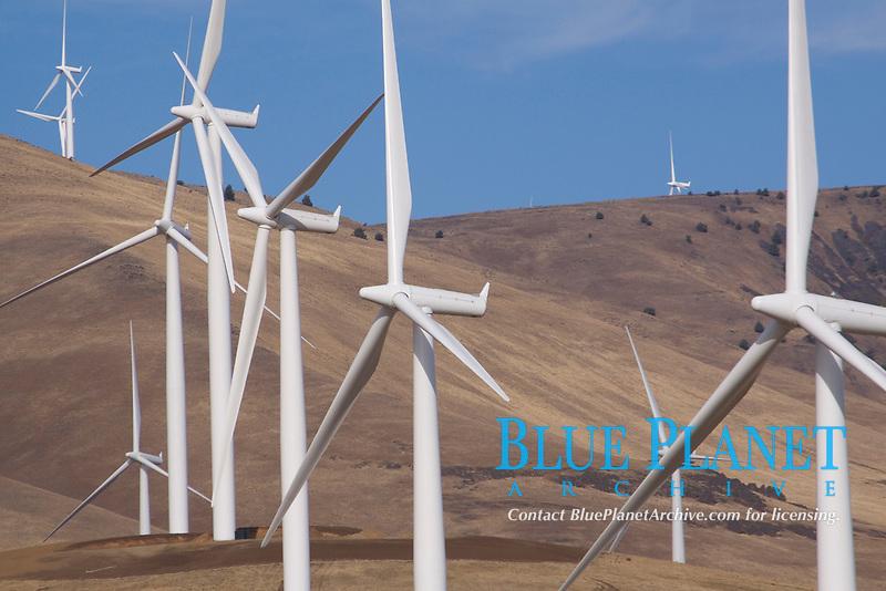wind farm, Large Wind Generators stand tall along the wind swept coastline of the Columbia River, Washington, USA
