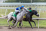 HALLANDALE BEACH, FL - JAN 20:Jay's Way #4 with Emisael Jaramillo on board for trainer Amando De La Cerda maintains the lead over Mr. Jordan #5 as they head for the wire in the $200,000 Sunshine Millions Classic Stakes at Gulfstream Park on January 20, 2018 in Hallandale Beach, Florida. (Photo by Bob Aaron/Eclipse Sportswire/Getty Images)