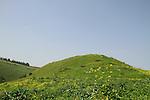 Tel Rekhesh in the Lower Galilee