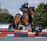 October 16, 2021: Emma Lomangino (USA), aboard Master Frisky, competes during the Cross Country Test at the 5* level  competes during the Cross Country Test at the 5* level during the Maryland Five-Star at the Fair Hill Special Event Zone in Fair Hill, Maryland on October 16, 2021. Scott Serio/Eclipse Sportswire/CSM