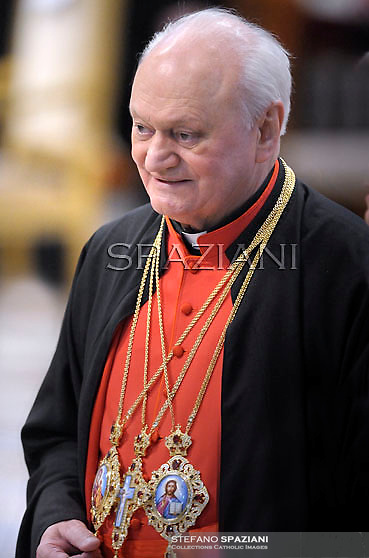 cardinal Lucian Muresan , Pope Benedict XVI leads the Consistory where he will appoint 22 new cardinals on February 18, 2012 at St Peter's basilica at the Vatican.