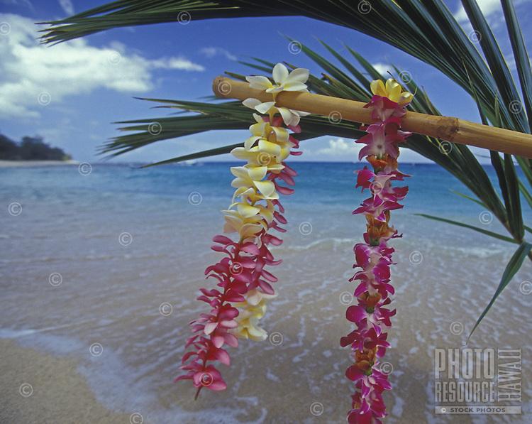 Plumeria leis, a beautiful and fragrant Hawaiian tradition. at the beach