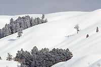Winter over de Lamar vallei, Yellowstone NP