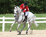 12 July 2009: Becky Holder and Courageous Comet after winning the CIC 3* Maui Jim Horse Trials at Lamplight Equestrian Center in Wayne, Illinois.