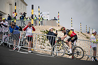 eventual stage winner Wout van Aert (BEL/Jumbo-Visma) on the Mont Ventoux<br /> <br /> Stage 11 from Sorgues to Malaucène (199km) running twice over the infamous Mont Ventoux<br /> 108th Tour de France 2021 (2.UWT)<br /> <br /> ©kramon