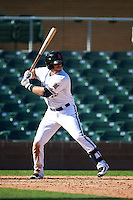 Surprise Saguaros outfielder Michael Reed (25) at bat during an Arizona Fall League game against the Glendale Desert Dogs on October 23, 2015 at Salt River Fields at Talking Stick in Scottsdale, Arizona.  Glendale defeated Surprise 9-6.  (Mike Janes/Four Seam Images)