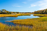 Fall color in Barnstable, Cape Cod, Massachusetts, USA