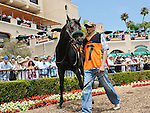 July 20, 2011.Price ridden by Joseph Talamo in the paddock before winning the first race on opening day at the Del Mar Thorougbred Club, Del Mar, CA