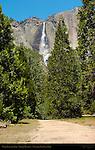 Upper Yosemite Fall in Spring, Leidig Meadow, Yosemite National Park