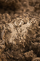13-8-2021 Freshly ploughed soil <br /> ©Tim Scrivener Photographer 07850 303986<br />      ....Covering Agriculture In The UK....