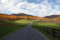 Winding roads lead to a landscaped country side in Albemarle County.Photo/ Andrew Shurtleff