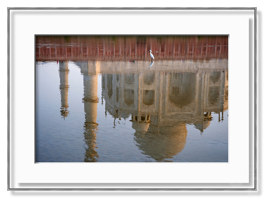 A lone egret and the Taj Mahal reflecting in the Yamuna River, India