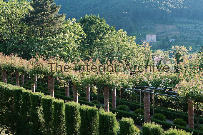 A brick pergola is covered in climbing roses and runs parallel to neat gravel paths of box hedging and a row of clipped cypress trees