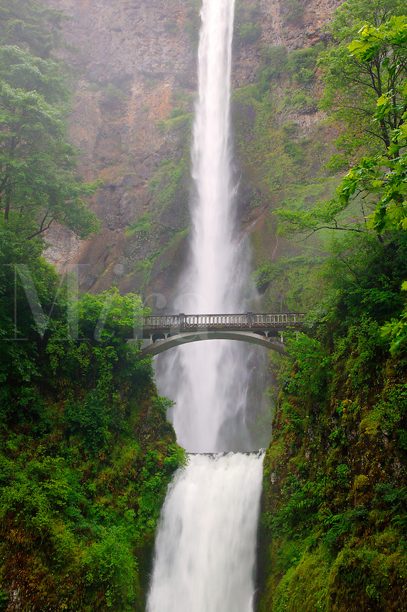 Benson Bridge and the Multnomah Falls off the Historic Columbia River Highway Columbia River Gorge National Scenic Area, Oregon