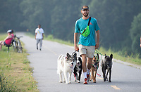 Matt Newton, owner of Off Leash K9 Training, takes a training walk Monday Aug. 2, 2021 with Mira (from the left) Ozzy, Nova and Harley on the Razorback Greenway in Fayetteville.The Greenway is 36 miles long and connects Walker Park in Fayetteville to Lake Bella Vista north of Bentonville. For more information about dog training see https://fayettevilledogtrainer.com/ Visit nwaonline.com/21000803Daily/ and nwadg.com/photo. (NWA Democrat-Gazette/J.T. Wampler)