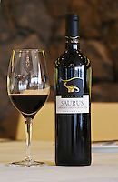 Bottle and glass of Saurus Patagonia Cabernet Sauvignon Bodega Familia Schroeder Winery, also called Saurus, Neuquen, Patagonia, Argentina, South America