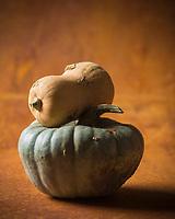Gastronomie, Courges: Butternut et Queensland blue // Gastronomy, Curcubita: Butternut squash and Queensland blue